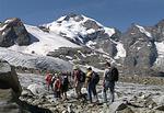 Melting Alps