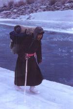 Messanger of Himalayas